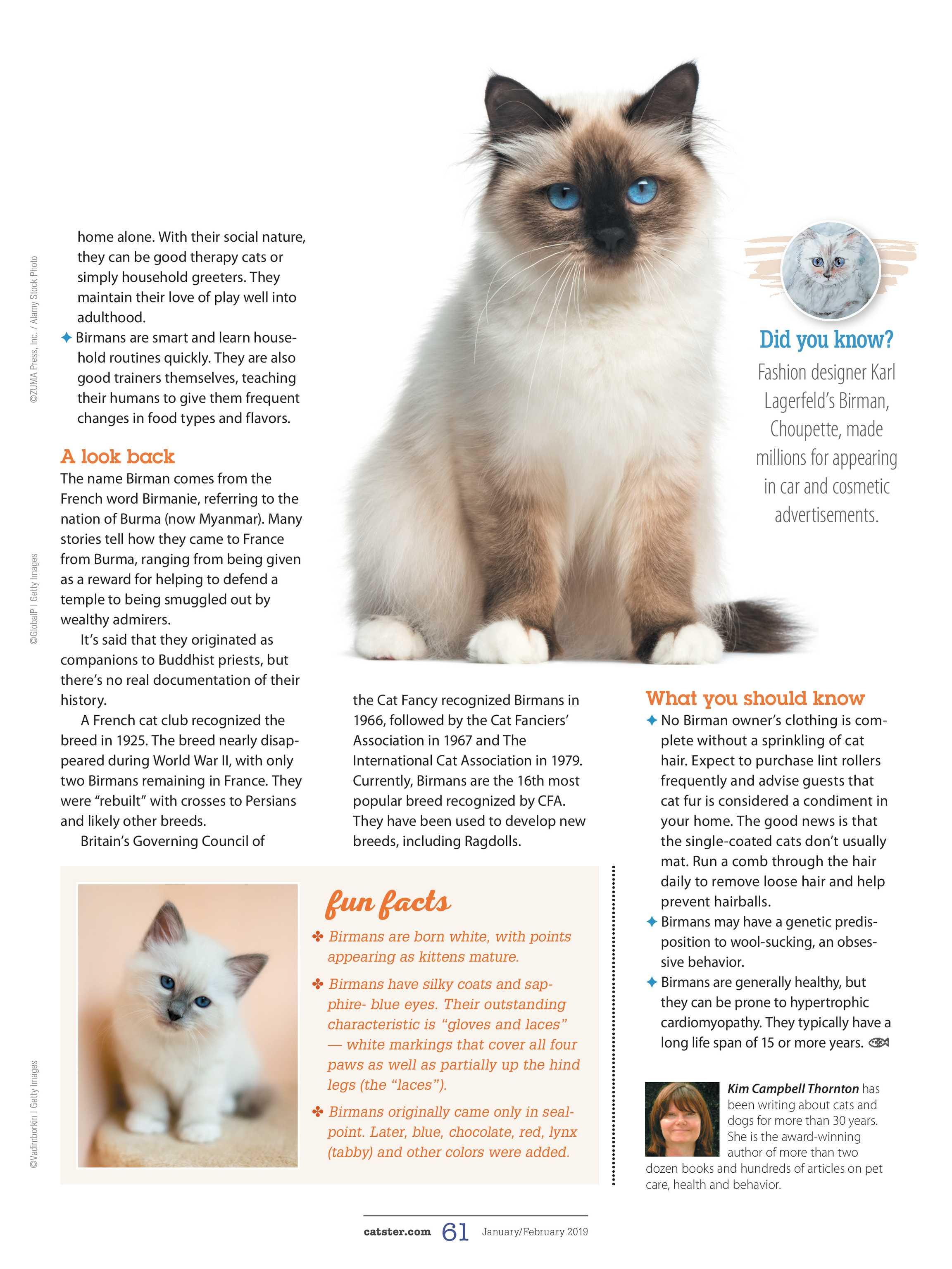 Catster Magazine Januaryfebruary 2019 Page 60