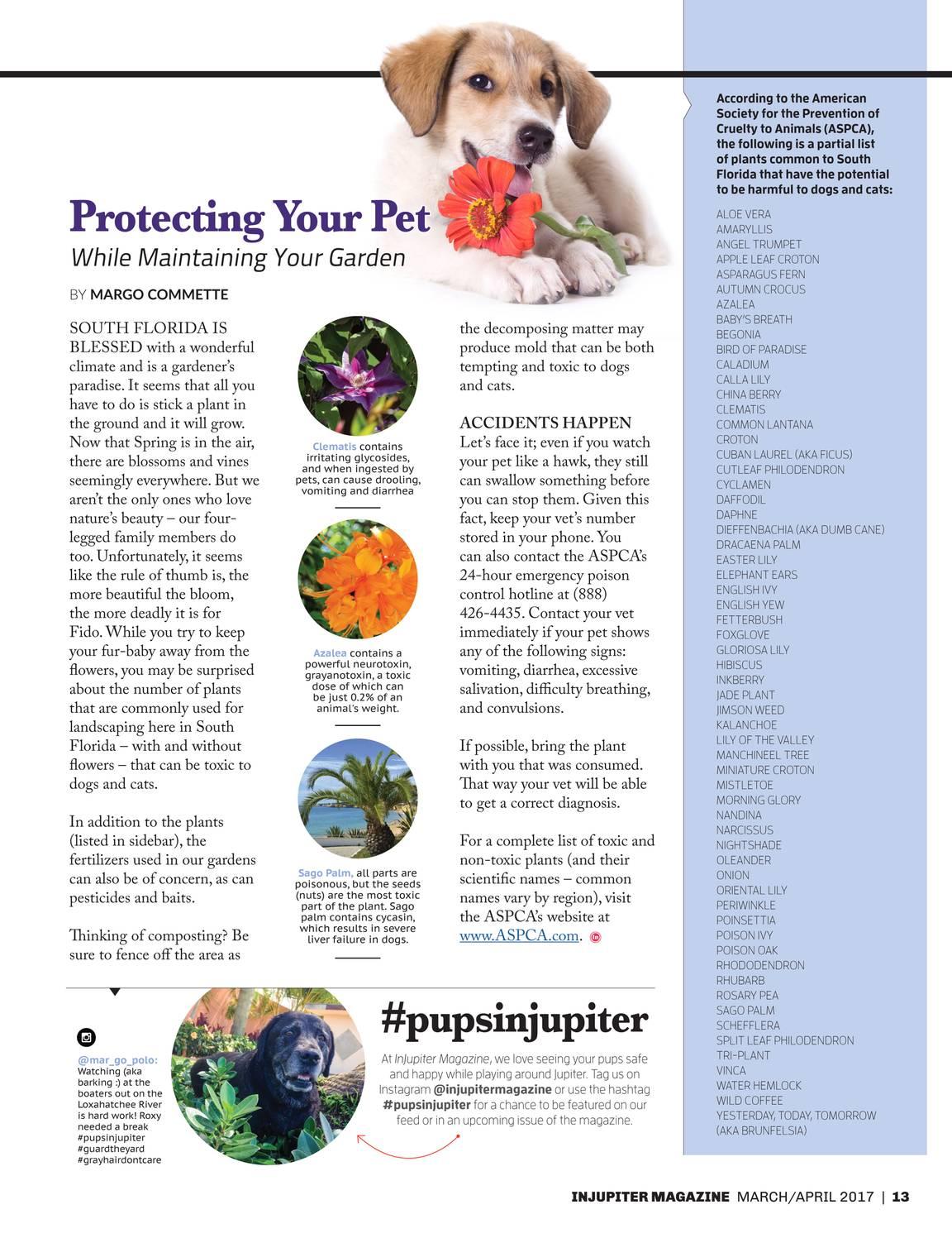 Florida Coast Magazine - MarApr17 - page 12