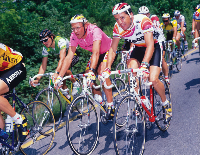 stephen roche after losing time