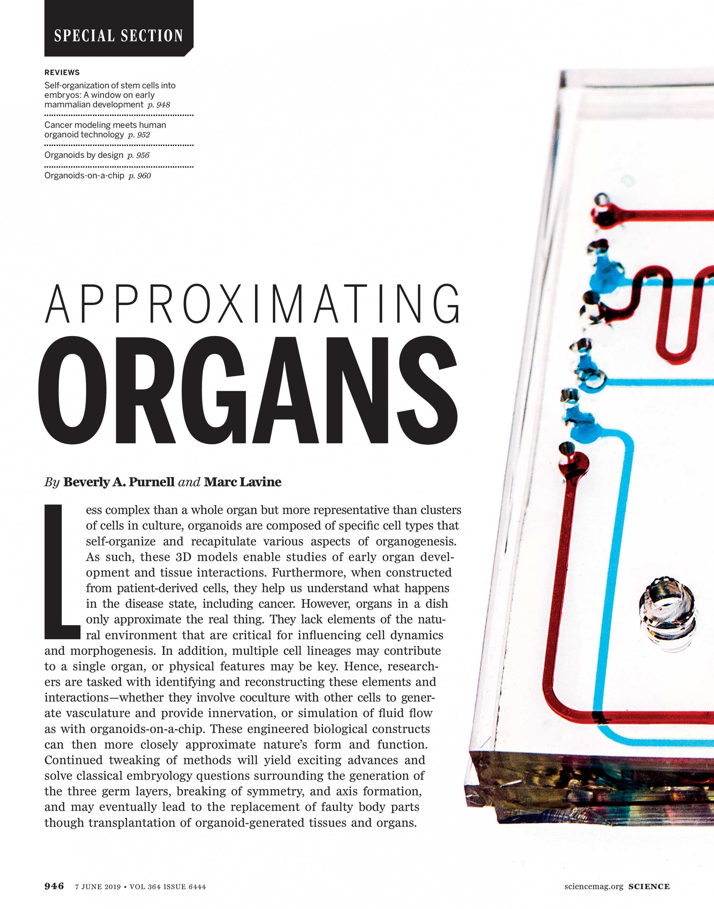 Science Magazine - June 7, 2019 - page 945