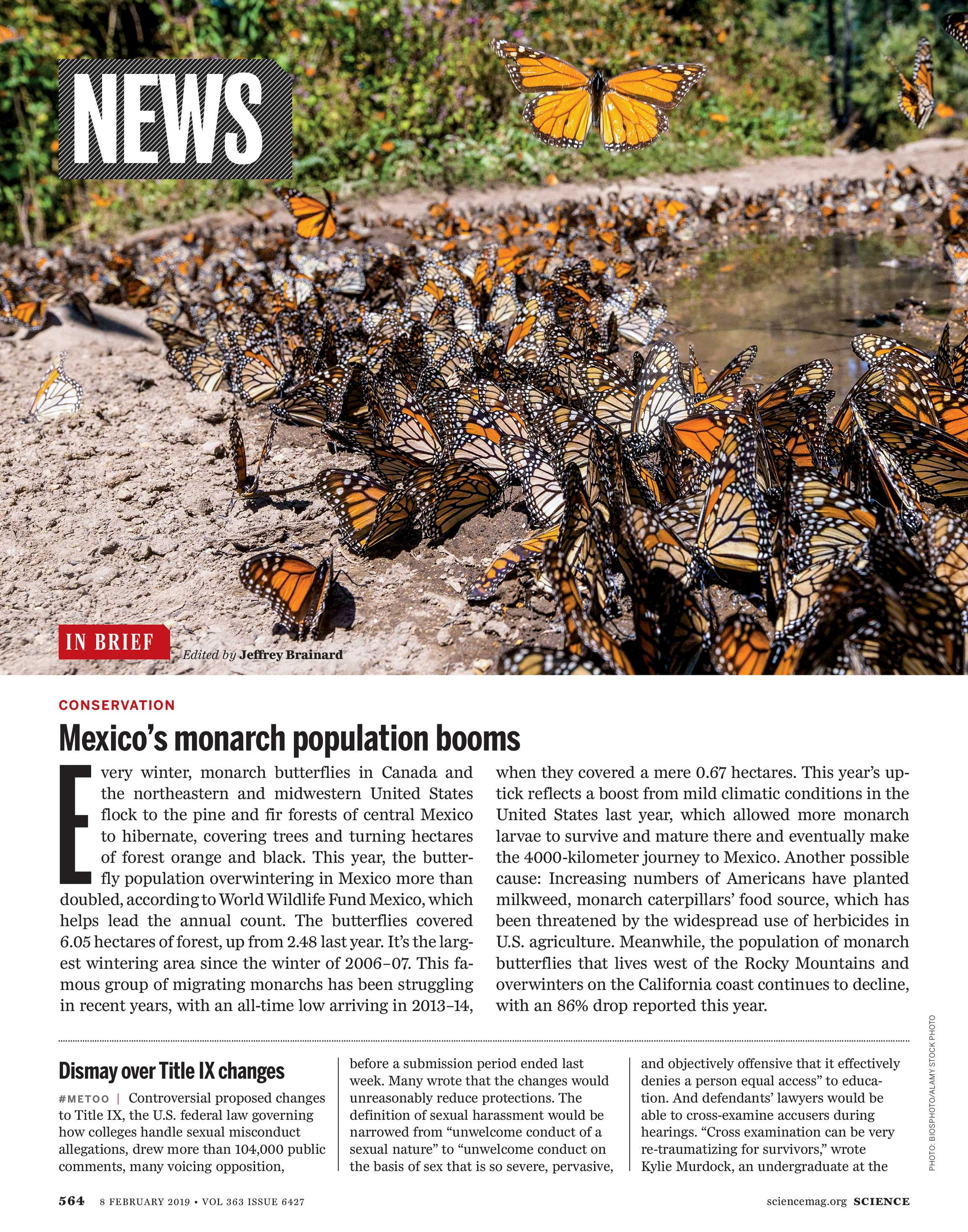 Science Magazine - February 8, 2019 - page 564