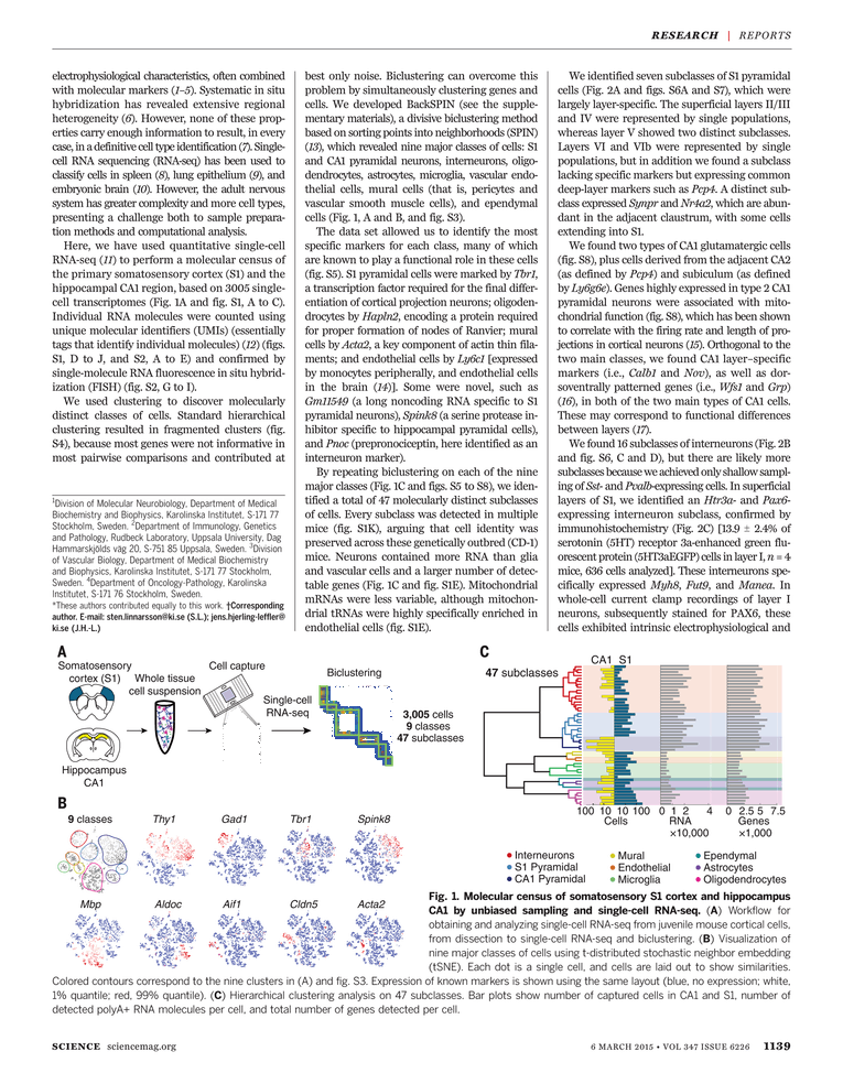 Science Magazine - 06 March 2015, Chinese Edition - Page 1139