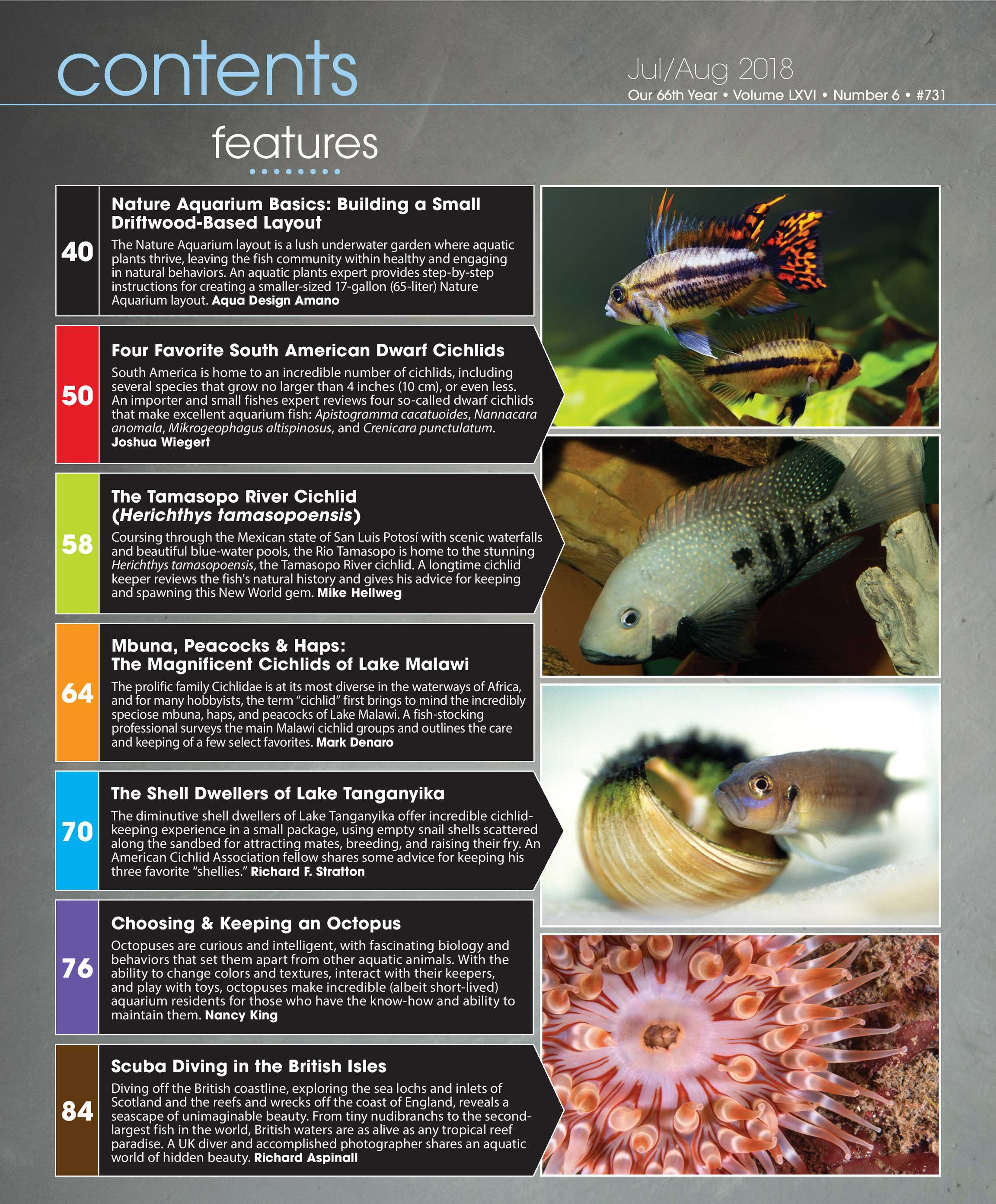 Tropical Fish Hobbyist - Jul/Aug 2018 - page 3 on home cooking designs, home park designs, home gardening designs, home decor designs, home glass designs, home beach designs, home plans designs, home construction designs, home water feature designs, home lake designs, home library designs, home entertainment designs, home school designs, florida home designs, home archery range designs, home art designs, home salt designs, home dog kennel designs, home castle designs, home cafe designs,