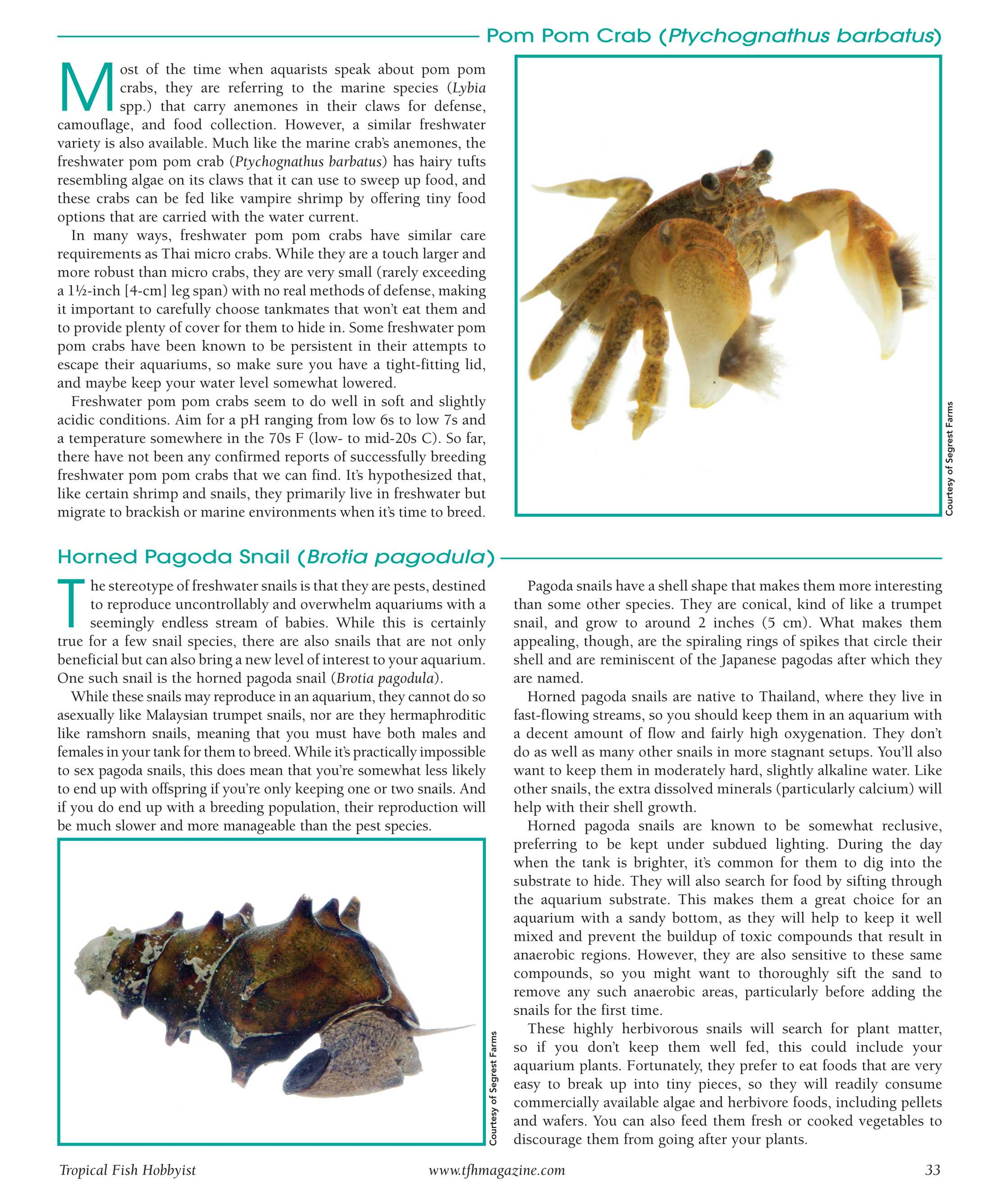 Tropical Fish Hobbyist - Nov/Dec 2017 - page 28