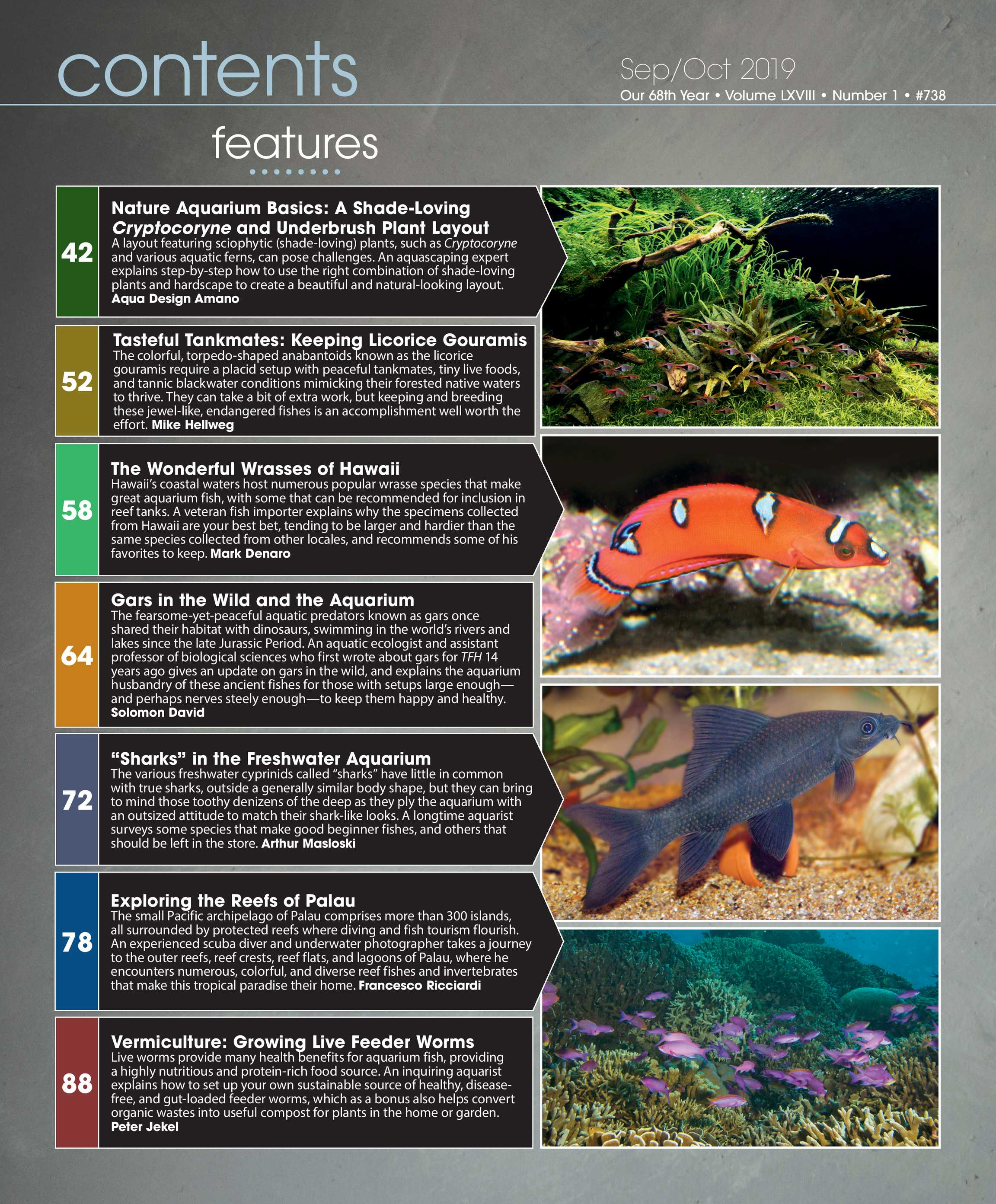 Tropical Fish Hobbyist - Sep/Oct 2019 - page 2 on home cooking designs, home park designs, home gardening designs, home decor designs, home glass designs, home beach designs, home plans designs, home construction designs, home water feature designs, home lake designs, home library designs, home entertainment designs, home school designs, florida home designs, home archery range designs, home art designs, home salt designs, home dog kennel designs, home castle designs, home cafe designs,