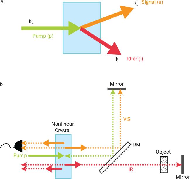 Photonics Spectra - July 2019 - IR Metrology with Visible Light