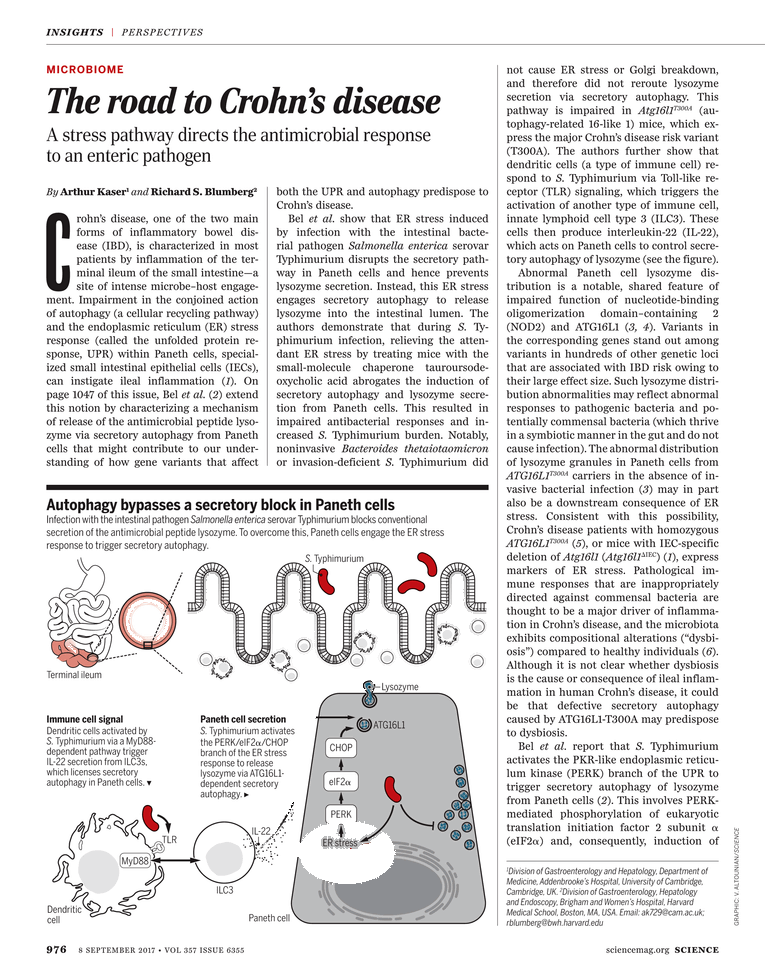 Science Magazine - September 8, 2017 - Page 976
