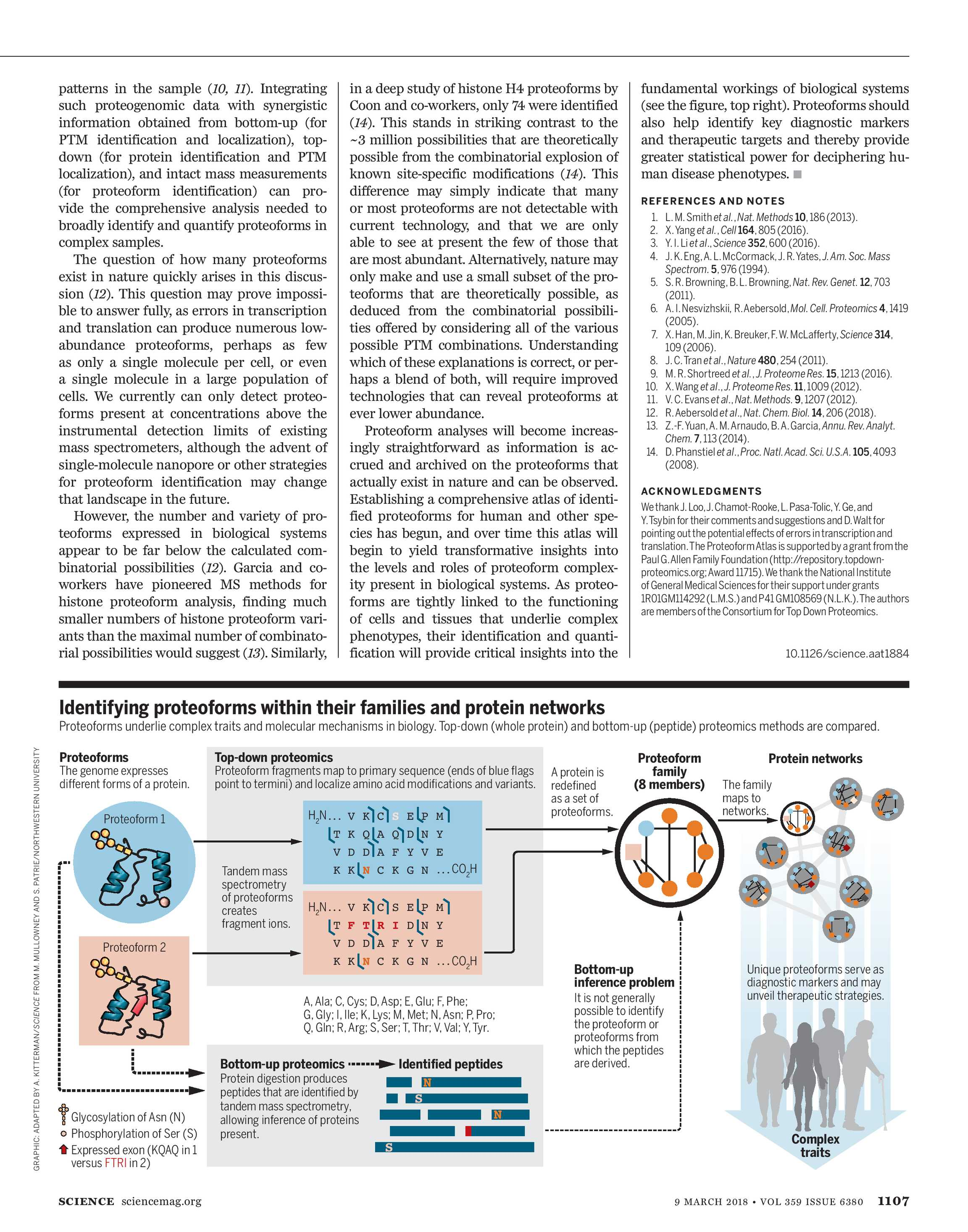 Science Magazine - March 9, 2018 - page 1108