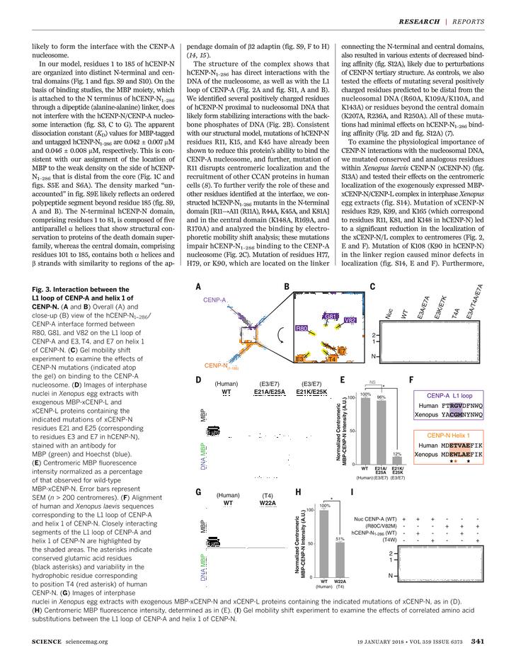 Science Magazine - January 19, 2018 - Page 341
