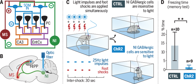 Science Magazine - May 24, 2019 - A radiative cooling