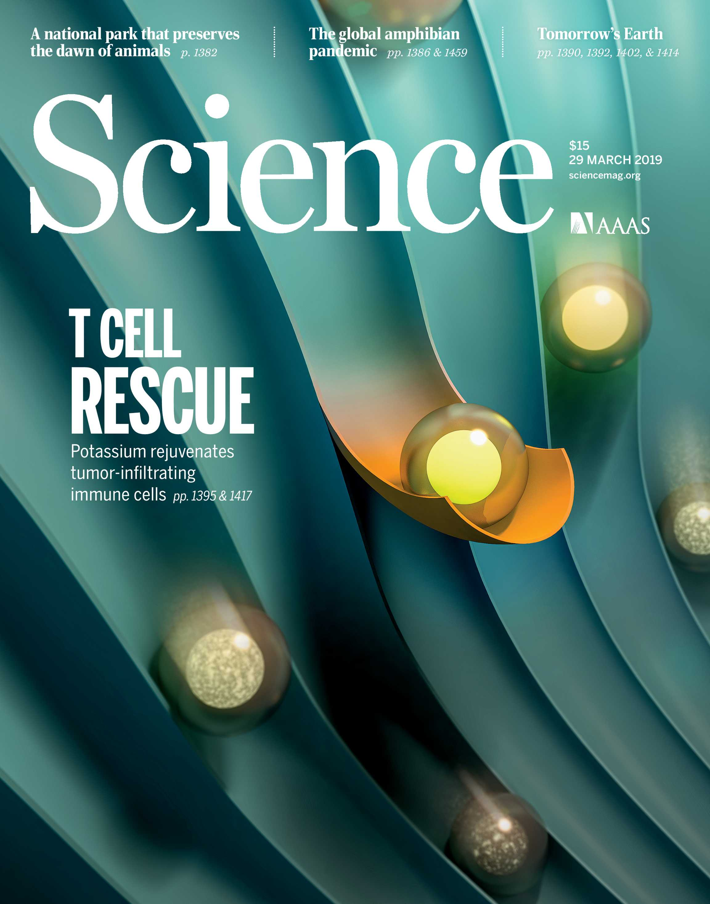 Science Magazine March 29 2019 Page Cover