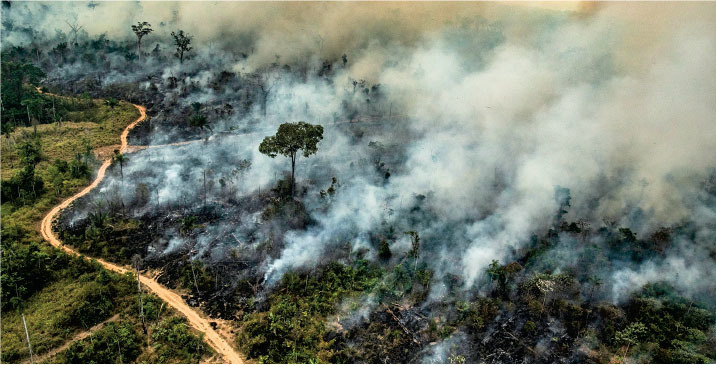 Science Magazine August 30 2019 Amazon Fires Clearly Linked