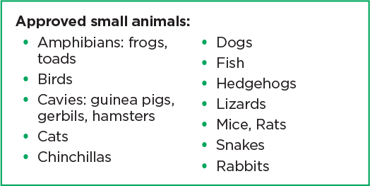 approved small animals